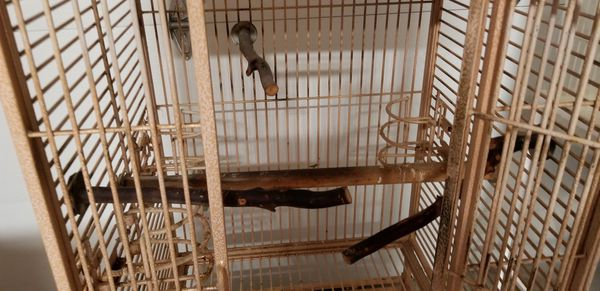 California Brand Parrot Cage