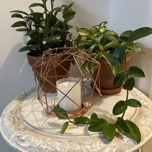 Rose Gold Geometric Cage With Glass And Handle for Sale in Brooklyn, NY