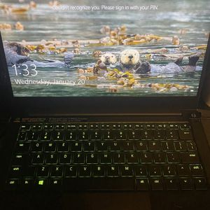 Razer blade Stealth 13 for Sale in Cape Coral, FL