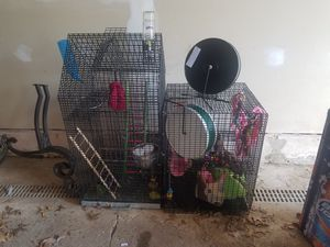 Cages for birds or sugargliders for Sale in Arnold, MO