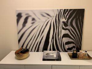 Zebra Canvas Photo/Painting for Sale in Seattle, WA