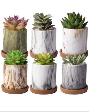 Succulent plant pots for Sale in Houston, TX