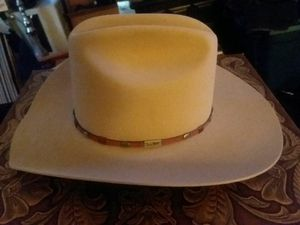 Beaver cowboy hat for Sale in Columbus, OH