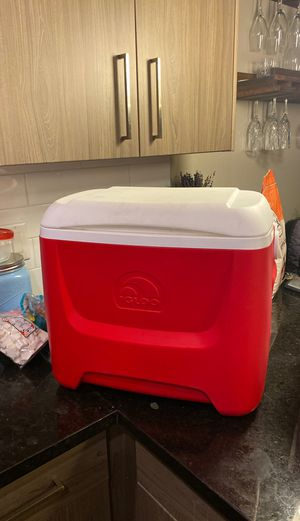 Igloo cooler for Sale in Lakewood, CO