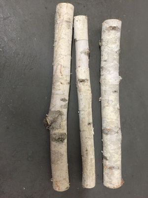 Birch Tree, bundle of 3 -winter decoration for Sale in New York, NY