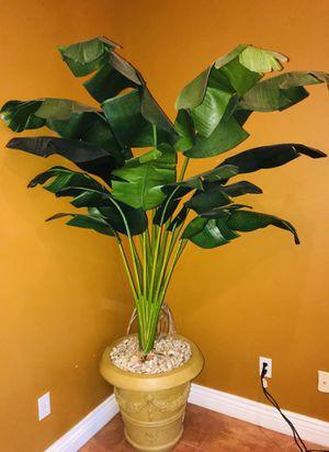Decor plant for Sale in Orlando, FL
