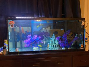 50 gal fish tank for Sale in Fontana, CA