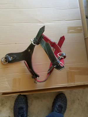 Leather dog harness for Sale in Sanger, CA