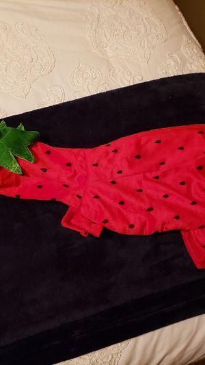 Strawberry Pet Costume for Sale in Joliet, IL