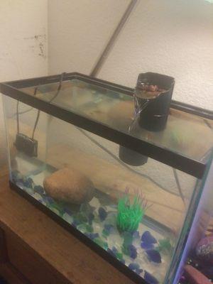 10 gallon fishtank and filter for Sale in Phoenix, AZ