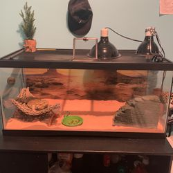 40 Gallon Tank for Sale in Gaithersburg,  MD