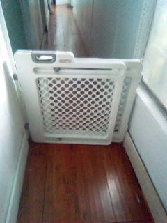 Dog gate adjustable 39 inch long and 23 inches tall for Sale in Palm Springs, FL