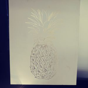 Pineapple canvas for Sale in Oklahoma City, OK