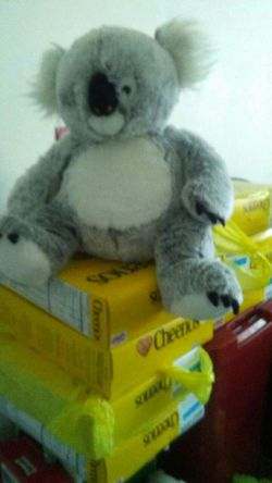 2' Stuffed Kawala Bear for Sale in Toms River,  NJ