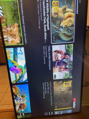 "LG LG 65UJ6300-65"" Super UHD 4K HDR Smart LED TV WebOs for Sale in Palatine, IL"