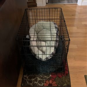 Dog Kennel for Sale in Haines City, FL