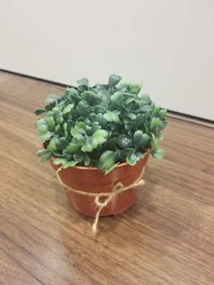 Fake Plastic Plant with Pot for Sale in Los Angeles, CA