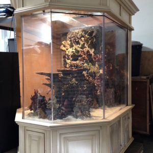 Huge Fish Tank Aprox 700-1000 Gallon Aquarium You'll Need A Forklift And Trailer for Sale in Huntington Beach, CA