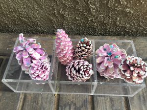 7 Pink pine cones for Sale in Claremont, CA