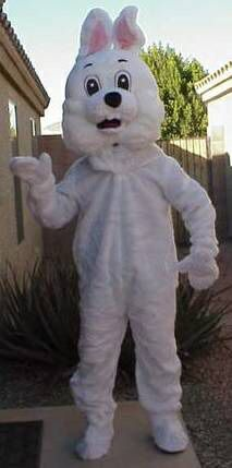 Easter Bunny will come to you!! Travels valley-wide! for Sale in Tempe, AZ