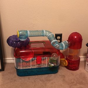 Pet Hamster for Sale in San Antonio, TX