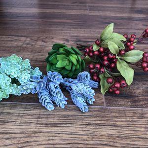 Faux Succulent Bundle for Sale in Sterling, VA