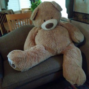 Giant teddy bear (kept nice and clean) for Sale in Bartlesville, OK