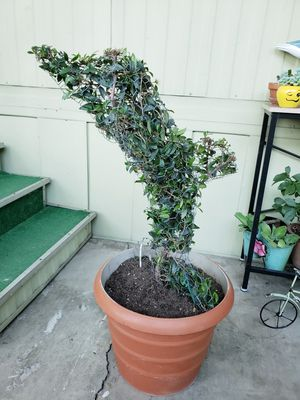 Dolphin tree $44.99 for Sale in Ontario, CA