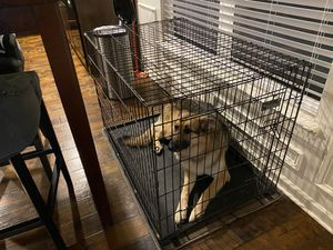 Dog kennel for Sale in Simpsonville, SC
