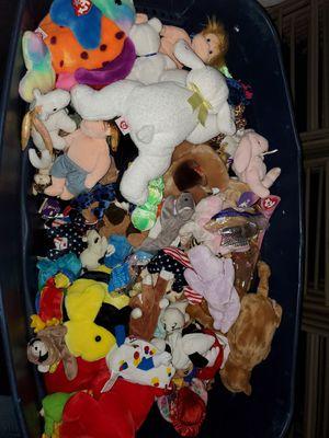 Beanie Babies for Sale in Winter Garden, FL