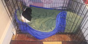 Extra large dog kennel for Sale in Columbus, OH