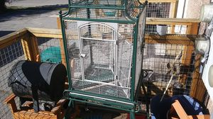 Bird cage for Sale in Clearfield, UT