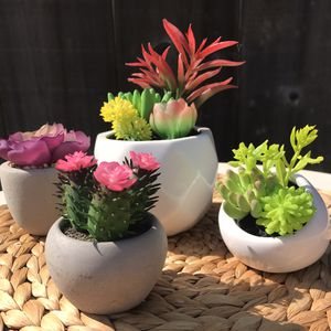 Set of 4 Artificial Succulents in Ceramic Pots Home Decor for Sale in Fresno, CA