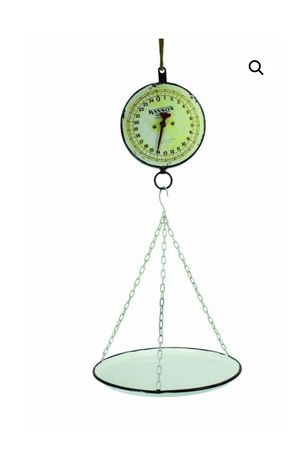 New Hanging Scale planter for Sale in DeLand, FL