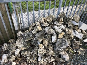 Coral decorative stones for Sale in Coral Gables, FL