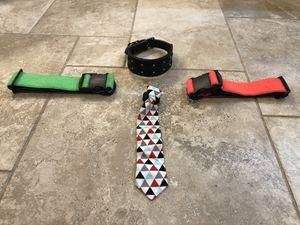 Dog collars and tie for Sale in Riverview, FL