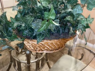 Fake House Plant for Sale in Tinley Park,  IL