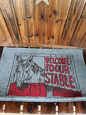 Horse rug,,,new,,,17x27,,, for Sale in Linden, PA