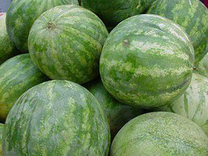 Watermelons for Sale in Stockton, CA