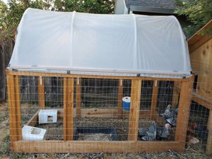 6 chickens, coop and run for Sale in Benicia, CA