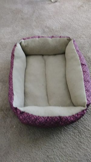 Kitty bed for Sale in Avon Park, FL