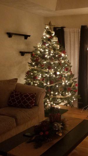 Christmas Tree for Sale in Alamo, GA
