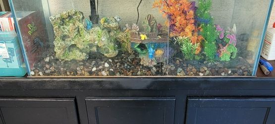 125 Gallon Fish Tank + Stand + More for Sale in Phoenix,  AZ