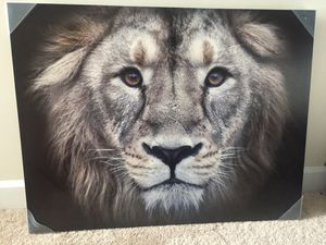 """Lion painting 39.5"""" x 30.5"""" for Sale in Redland, MD"""