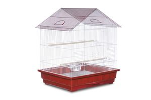 Medium sized bird cage for Sale in Newton, MA