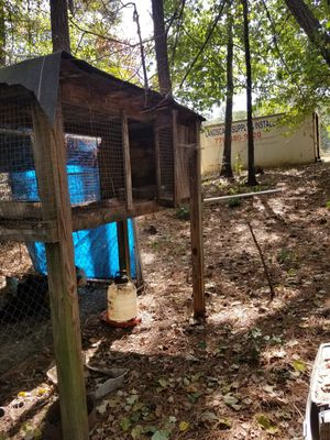 Animal Cages for Sale in Conyers, GA