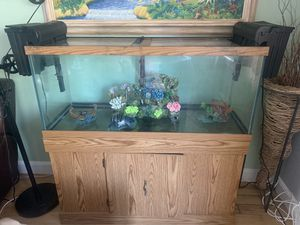 Full 75 gallon aquarium setup with stand,sand, filters, decorations and air pumps for Sale in Brockton, MA