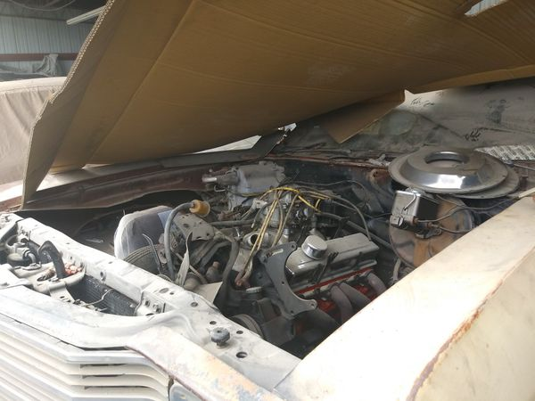 1965 Chevy Impala Super Sport restored and 1972 Chevy Chevelle