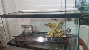 Aquarium for Sale in Rockville, MD