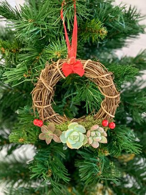 Succulent Christmas Wreath Ornament for Sale in Pineville, LA